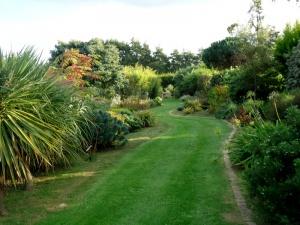 jardin1.jpeg