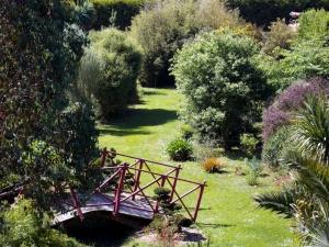 jardin2.jpeg