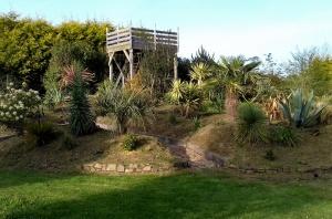 jardin6.jpeg